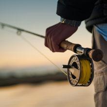 С 1 марта вводится запрет на лов некоторых видов рыб
