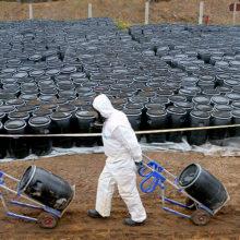 В Чечерском районе построят завод по переработке пестицидов