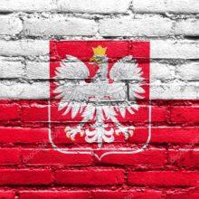 Свядомый манямирок: День Воли и польские корни БНР