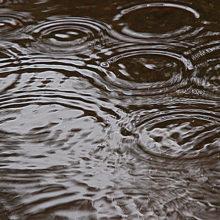 Погода в Беларуси на вторник 19 марта