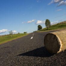 Видеофакт: бревна лесовоза вывалились прямо на трассу