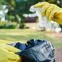 Экологи приглашают принять участие в уборке гомельского озера