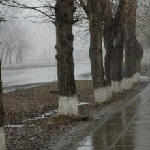 Оранжевый уровень опасности объявлен в Беларуси 8 марта