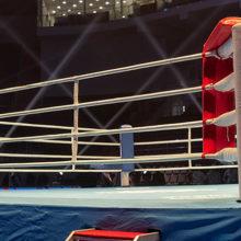 Чемпионат Беларуси по боксу стартовал В Гомеле