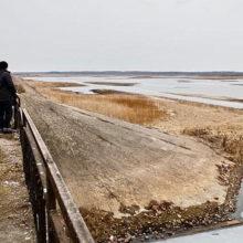 На Полесье высохло Днепро-Брагинское водохранилище