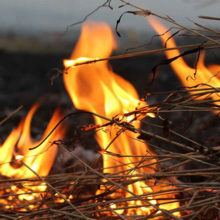 Под Рогачевом во время уборки территории женщина сожгла чужое сено