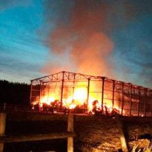 В Калинковичском районе сгорело 20 тонн сена