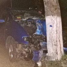 В Мозыре водитель въехал в дерево и скрылся с места ДТП