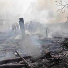 В Светлогорском районе сгорели четыре строения и пасека дачника