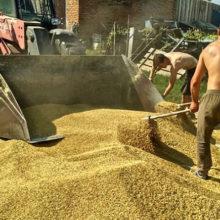 В УБЭП рассказали о громких хищениях в агропромышленном комплексе области