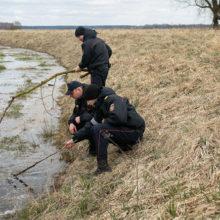 Двухлетнего мальчика нашли мертвым в мелиоративном канале
