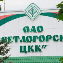 На Светлогорском ЦКК работник упал с 7-метровой высоты