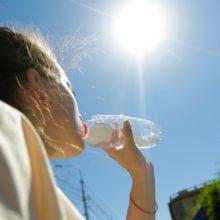 «Ад наступает». Аномальная жара в Европе может унести тысячи жизней