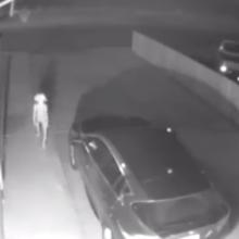 «Добби свободен»: Эльф попал на камеру безопасности (ВИДЕО)