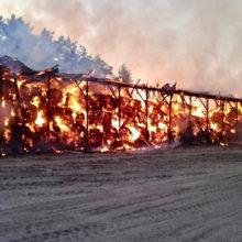 В Рогачевском районе сгорело 340 тонн сена, одна из версий — поджог