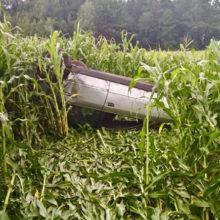 В Светлогорском районе за один день две машины с дороги вылетели в поле