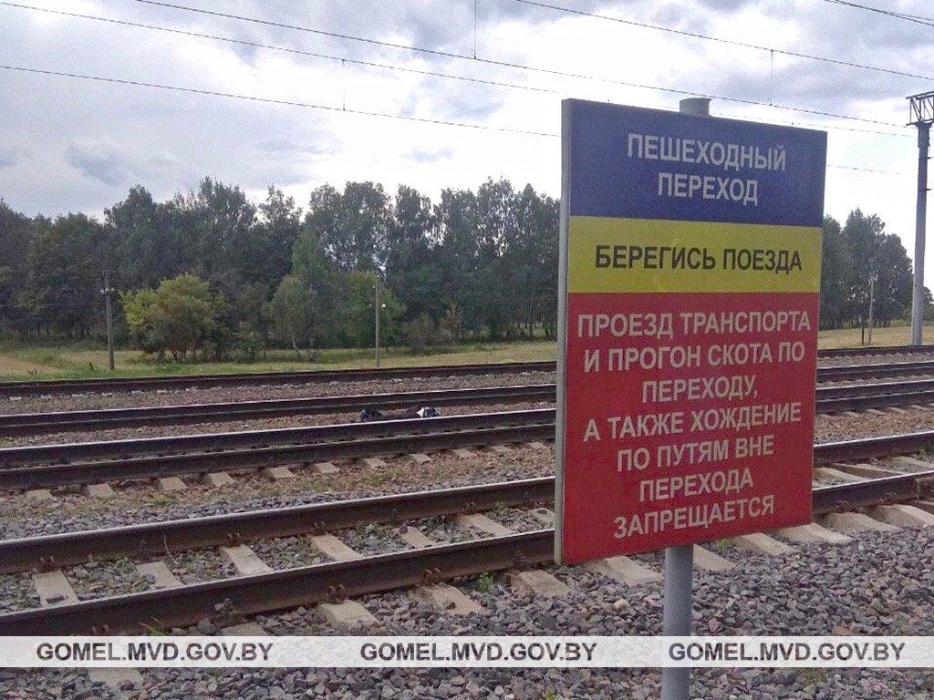 В Жлобинском районе