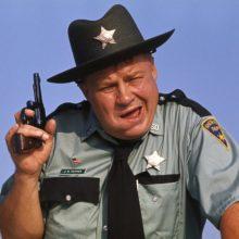 ВБеларуси появятся милиционеры-шерифы