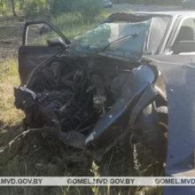 В Петриковском районе «Ауди 80» вылетело в кювет
