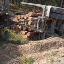 Груженный бревнами лесовоз перевернулся в Ивацевичском районе