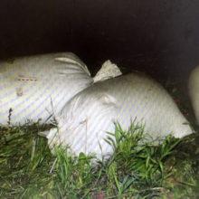 Более 100 кг ячменя похитили с зерносклада в Чечерском районе