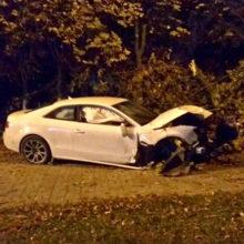 ДТП в Гомеле: Audi врезался в дерево, постраладала девушка