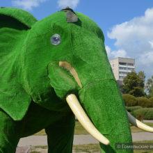 В Гомеле неизвестные вандалы изуродовали фигуры животных из искусственной «травы»