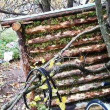 Тюрьме предпочел шалаш в лесу. В Рогачевском районе задержан вор-отшельник