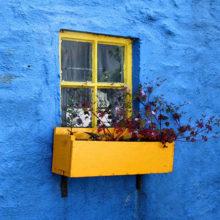 В Гомеле откроется выставка живописи «Окна дома твоего»