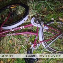 В Рогачевском районе микроавтобус насмерть сбил велосипедиста