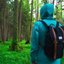 Женщина не понимала, почему ее супруг ходит один в лес