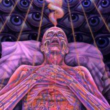 Ученые рассказали, что чувствуют люди после смерти