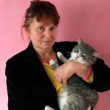 Друзья-котофеи: пенсионерка из Хойников спасает братьев наших меньших