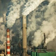 Европарламент объявил климатическую чрезвычайную ситуацию