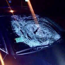 В Мозыре автомобиль сбил женщину на «зебре», она в реанимации