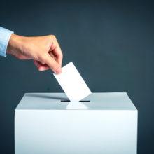 Выборы в Беларуси. Названы роковые ошибки кандидатов в депутаты