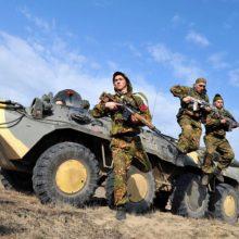 Беларусь заявила о готовности к совместным учениям с НАТО