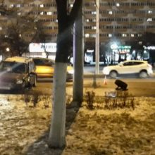 Серьезное ДТП в Гомеле: одной легковушке вырвало колесо
