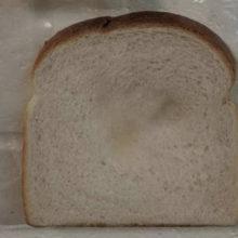 Смотрите, что будет с хлебом, если его брать грязными руками