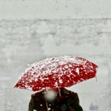 В середине недели в Беларуси потеплеет