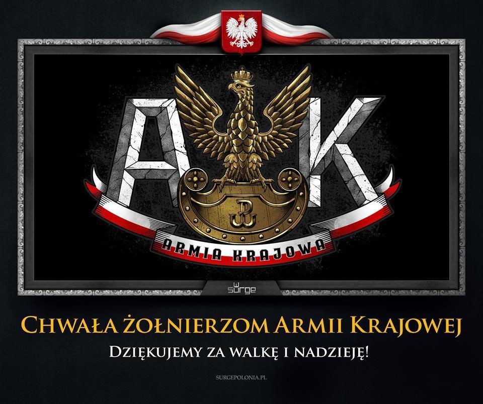 Картинка из польских соцсетей «Слава солдатам АК»