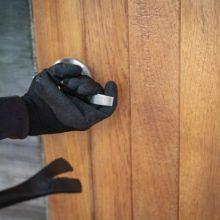 Пенсионер из Мозыря подозревается в серии краж из дачных домиков