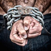 Под Житомиром торговцы людьми держали в рабстве белоруса