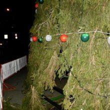 Пьяный гомельчанин порубил топором электрощиток новогодней ели