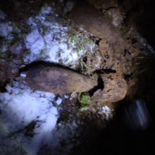 В деревне на Гомельщине было найдено 12 минометных мин