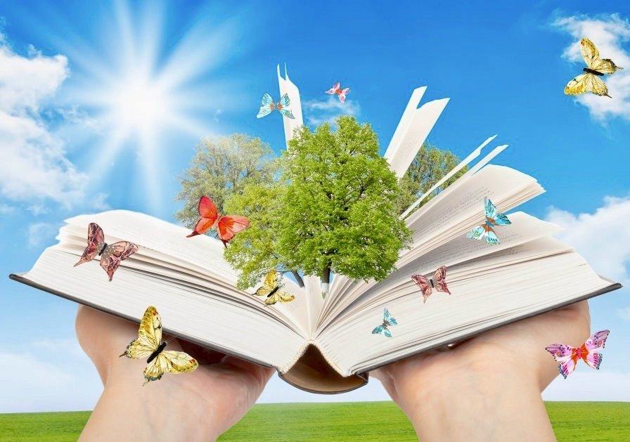 конкурс детских сочинений «Моя любимая книга»