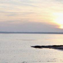 В Гомельской области восстановят Днепро-Брагинское водохранилище