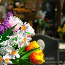 В Ельске неизвестные украли цветы с городского кладбища