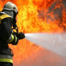 В Ветке на пожаре погибли два человека