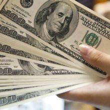 Житель Рогачевского района выманил 100 тысяч долларов под батутный центр